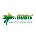 logo bovis